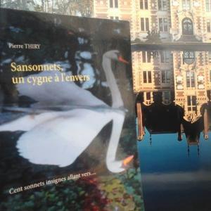 Matydittout vous invite à lire SANSONNETS UN CYGNE À L'ENVERS