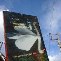 48e critique de SANSONNETS UN CYGNE À L'ENVERS sur BABELIO cliquez ici