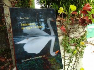 Boulimique des livres à lu SANSONNETS UN CYGNE À L'ENVERS et vous invite à le lire cliquez ici