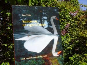COUSINES DE LECTURES vous invite à lire SANSONNETS UN CYGNE À L'ENVERS. Cliquez ici
