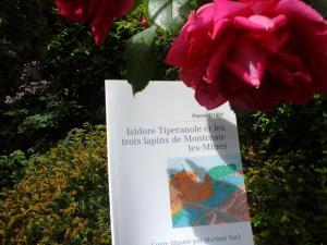 La Rubrique d'Olivia vous invite à lire Isidore Tiperanole et les trois lapins de Montceau-les-Mines