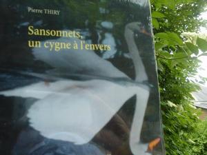 60e critique sur BABELIO pour SANSONNETS UN CYGNE À L'ENVERS cliquez ici
