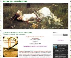 bazar-de-la-litterature-a-lu-le-mystere-du-pont-g-flaubert.jpg