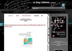 blog-de-s-ecriture-isidore-tiperanole.jpg