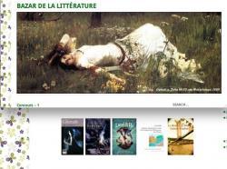concours-bazar-de-la-litterature.jpg