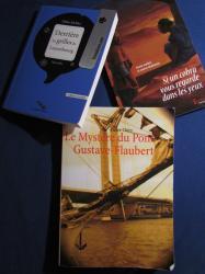 Il était un livre recommande Le Mystère du pont Gustave-Flaubert