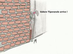 isidore-arrive.jpg