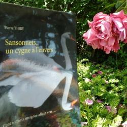 Lectures de Peggy fête l'été avec SANSONNETS UN CYGNE À L'ENVERS cliquez ici