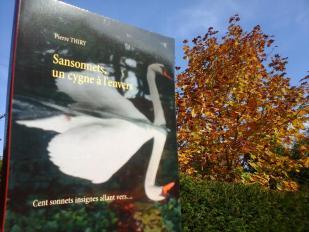Livro-Merveille vous invite à lire SANSONNETS UN CYGNE À L'ENVERS