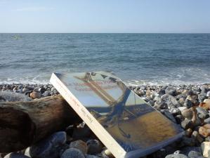 Les Chroniques d'Erenella vous invite à lire Le Mystère du pont Gustave-Flaubert (au bord de la mer ou ailleurs)