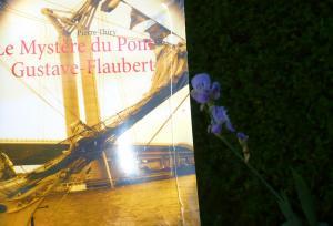 Pour la fête des mères offrez Le Mystère du pont Gustave-Flaubert