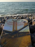 Envies de Livres vous invite à lire LE MYSTÈRE DU PONT GUSTAVE-FLAUBERT CET ÉTÉ