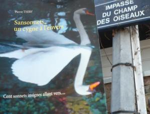 Marie-Nel-lit vous invite à lire SANSONNETS UN CYGNE À L'ENVERS