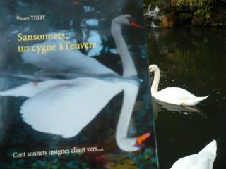 «Un recueil de sonnets facétieux...» Myrtille du blog LA BIBLIOTHÈQUE DE NORTHANGER vous invite à lire SANSONNETS UN CYGNE À L'ENVERS