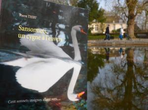 Achetez SANSONNETS UN CYGNE À L'ENVERS chez les libraires du réseau leslibrairiies.fr