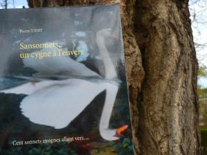 Le blog de Lydia vous invite à lire SANSONNETS UN CYGNE À L'ENVERS