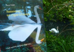 Iman's Books vous invite à lire SANSONNETS UN CYGNE À L'ENVERS cliquez ici (clic)