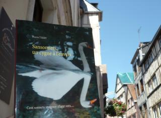 ByKimySmile vous invite à lire SANSONNETS UN CYGNE À L'ENVERS