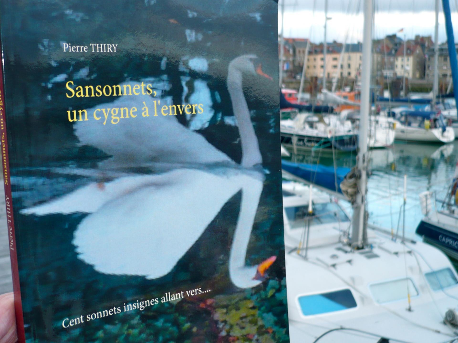 SANSONNETS UN CYGNE À L'ENVERS coup de coeur du mois sur le blog de CHARLOTTE BOKEUSE