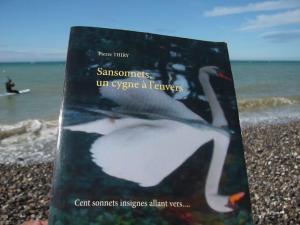 Cet été dépoussièrerez la littérature, lisez SANSONNETS UN CYGNE À L'ENVERS