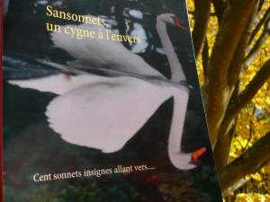 Le Blog d'une Rouquine a lu Sansonnets un cygne à l'envers et vous invite à le lire (et à l'offrir pour Noël) cliquez ici