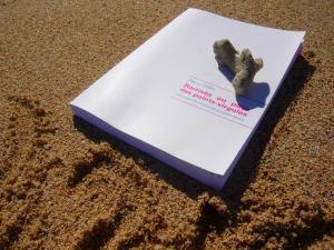 Que lire cet été à la plage? Ramsès au pays des points-virgules