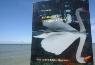 Creesalie vous invite à lire SANSONNETS UN CYGNE À L'ENVERS (plus une interview)