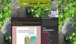 un-chocolat-dans-mon-roman a lu Isidore Tiperanole et les trois lapins de Montceau-les-Mines et vous le recommande